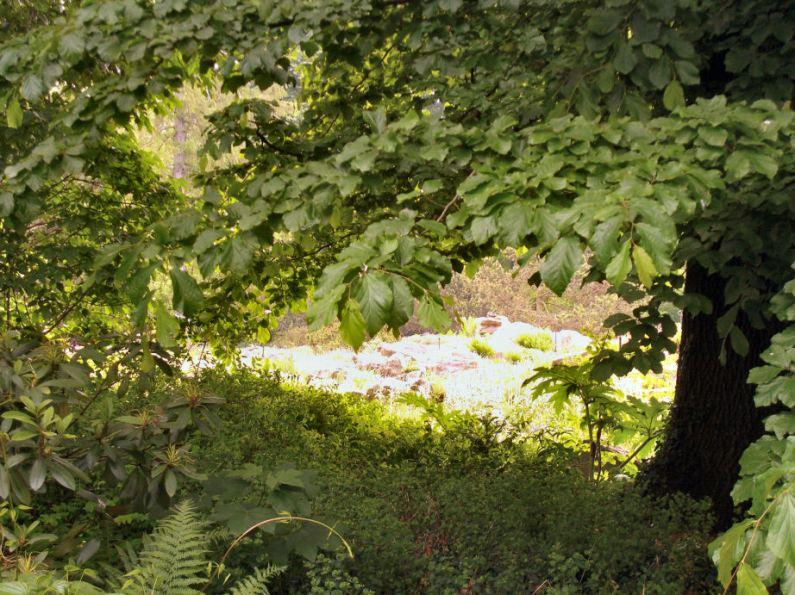 Botanischer Garten Ffm - CL2015-c - s
